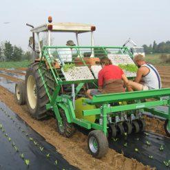 Разсадопосадачна машина HORTECH, модел OVER и OVER PLUS, за работа както върху чиста, така и върху покрита с мулчиращо фолио почвена повърхност – подходящи за разсаждане на всички видове зеленчуци