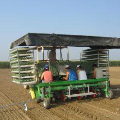Разсадопосадачна машина HORTECH, модел PRACTICA и PRACTICA MIDI, подходящи за разсаждане на всички видове зеленчуци
